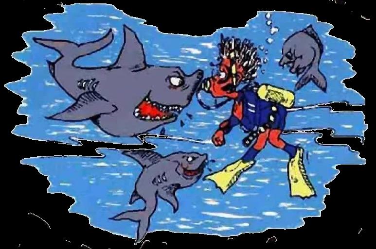 Logo Paradise Divers